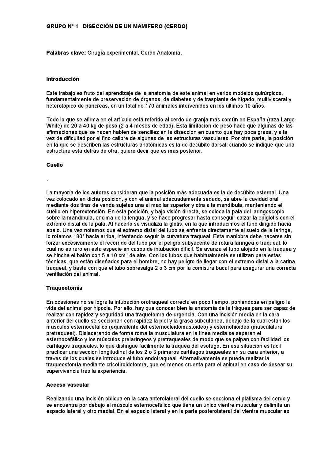 Grupo n°1 desarrollo del proyecto by k.l.adriano999 - issuu