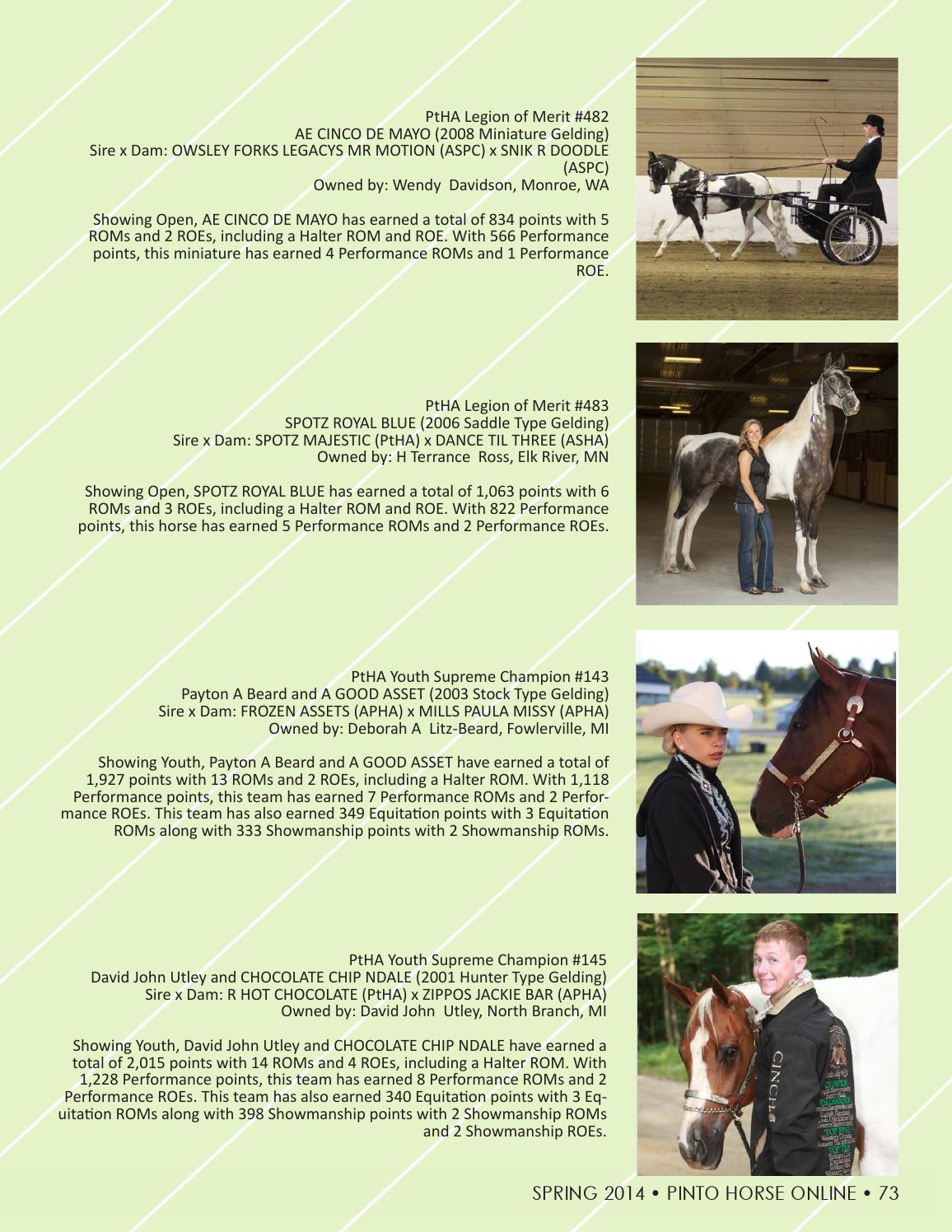 Pinto Horse Magazine - Spring 2014 by Pinto Horse