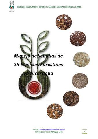 Manejo de semillas de 25 especies forestales en nicaragua by Ale ...