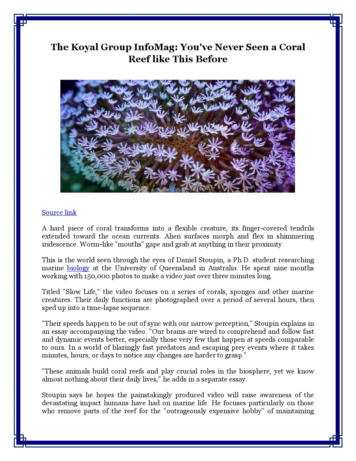 marine life essay