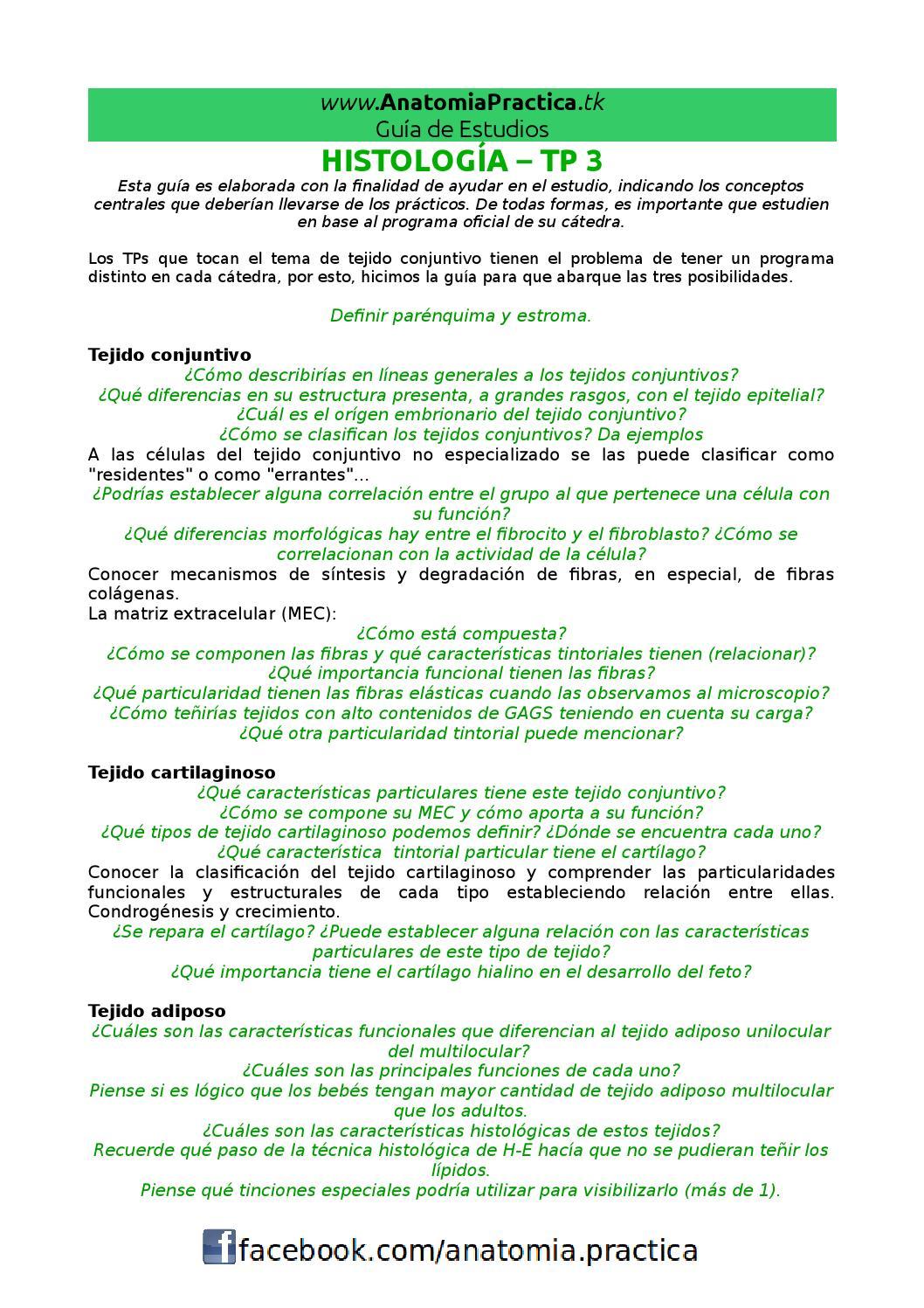 Histo - TP 3 by Anatomia Practica - issuu