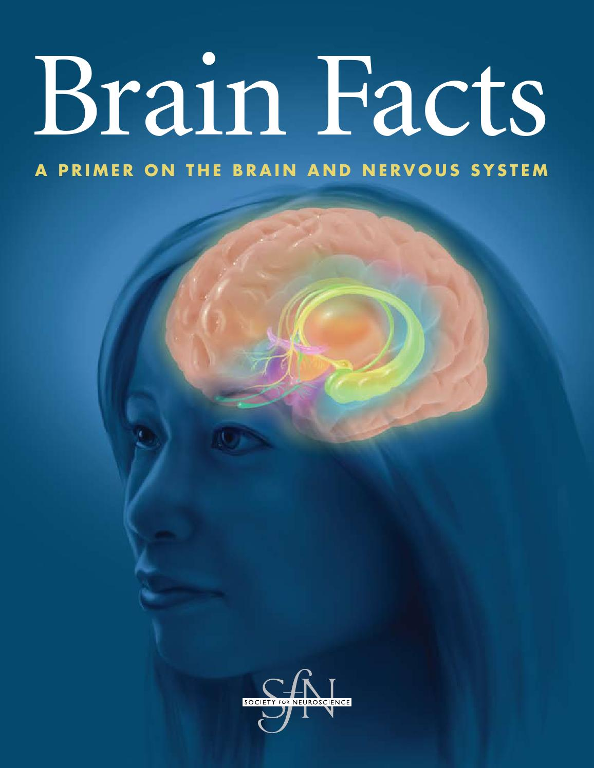 brain facts by chris robison