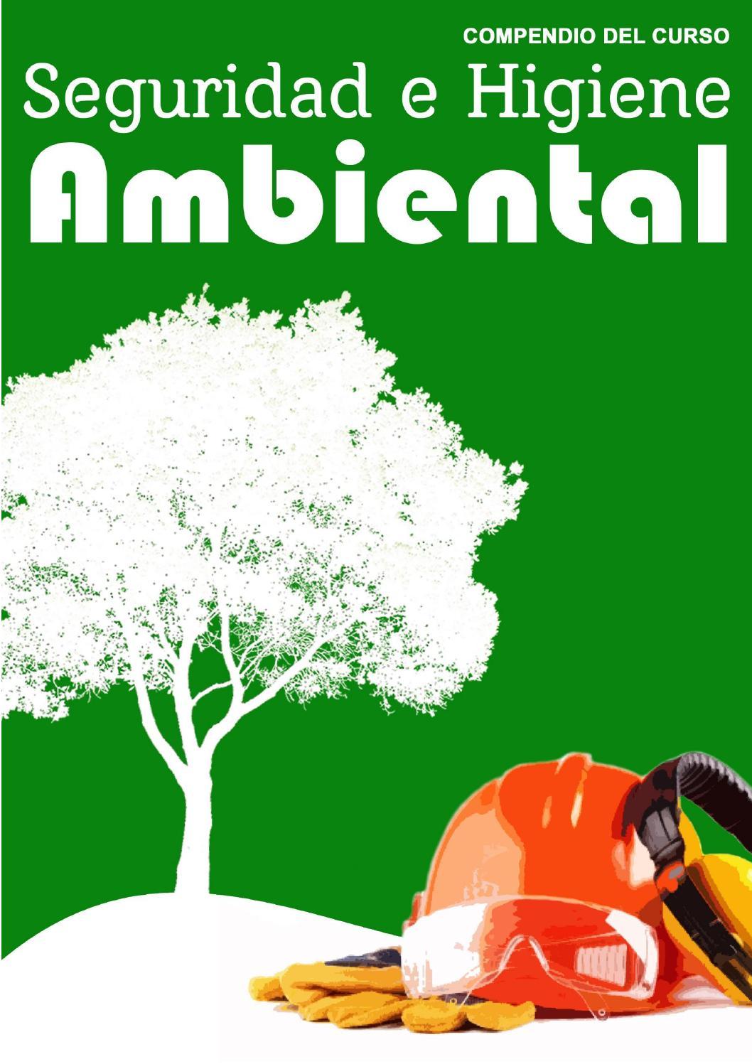 Compendio de seguridad e higiene ambiental by Jilder Michael ...