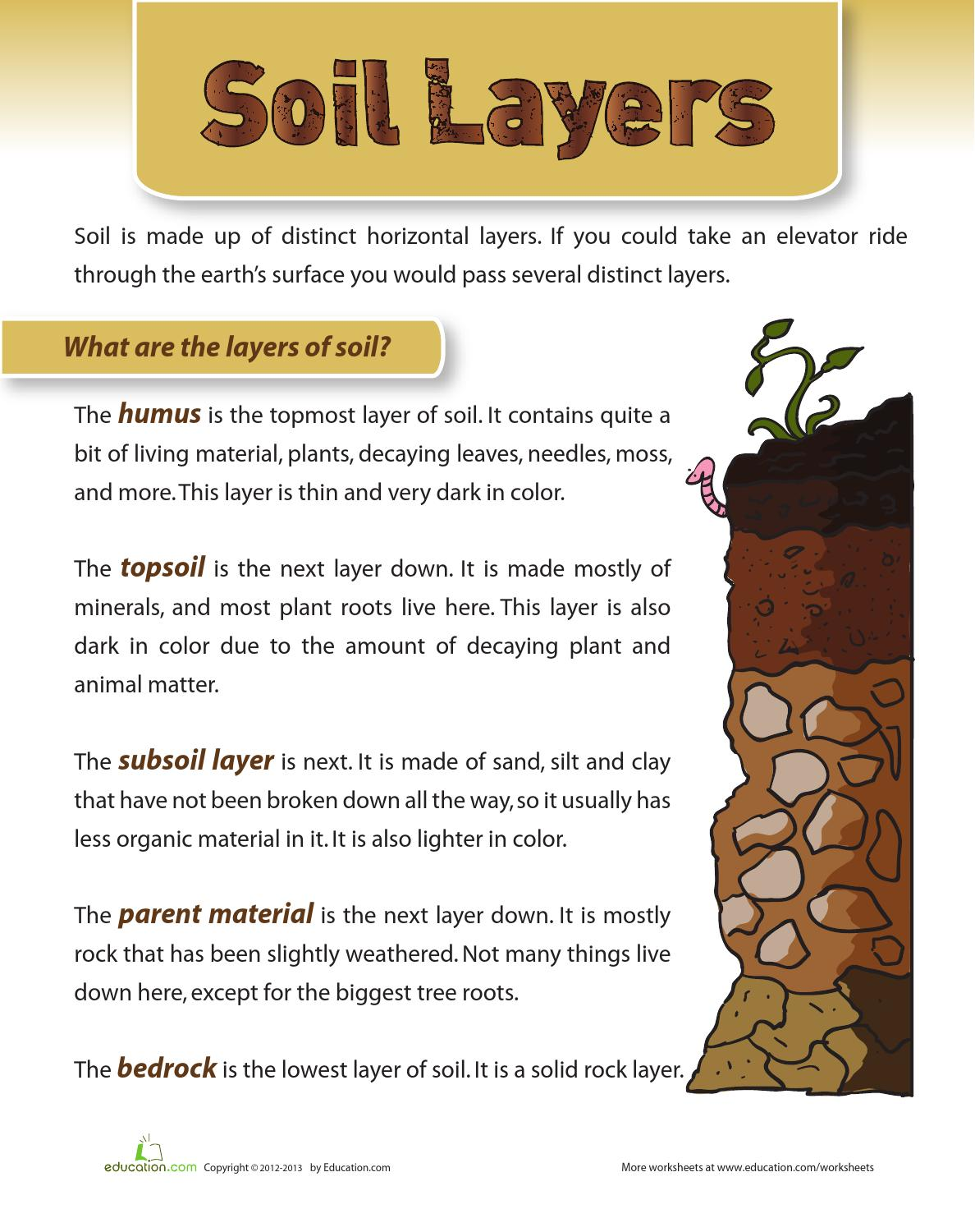 Worksheet soil worksheets grass fedjp worksheet study site for Different types of soil for kids