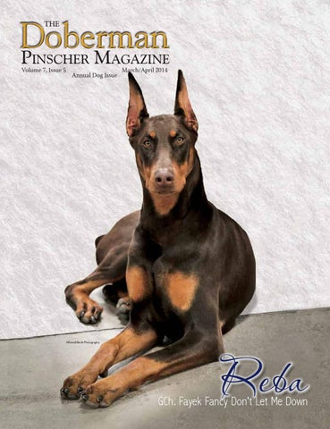 Doberman Pinscher Magazine March/April Sample by McGuire