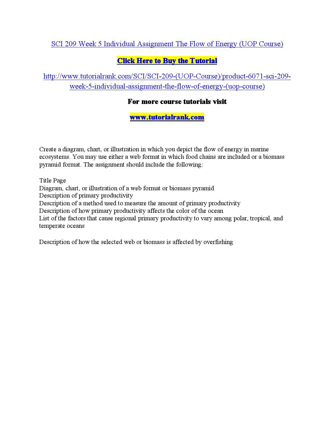 essay about poem parents special
