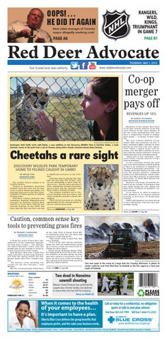 9a674cbf7 Red Deer Advocate, May 01, 2014 by Black Press Media Group - issuu