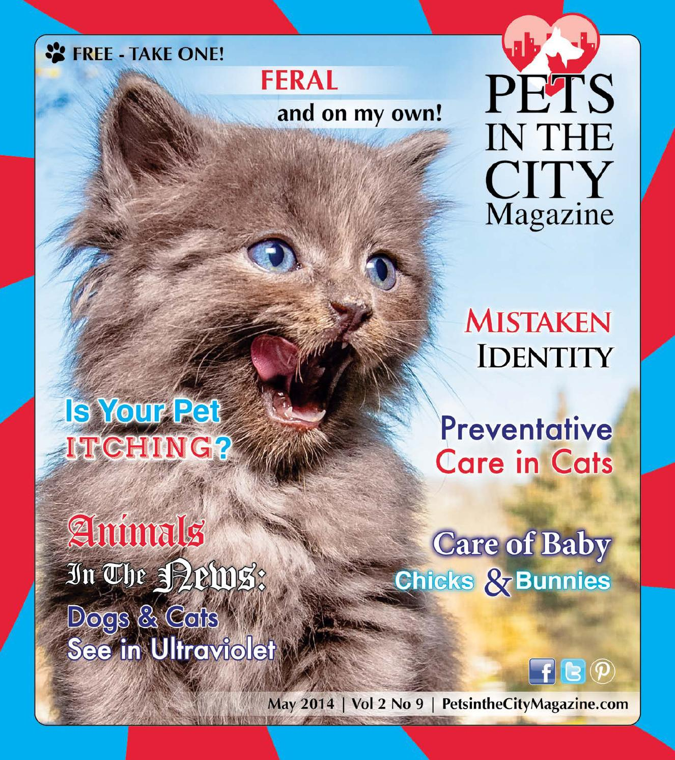 b363dd2553cd Pets in the City Magazine May 2014 Issue by Pets in the City Magazine -  issuu