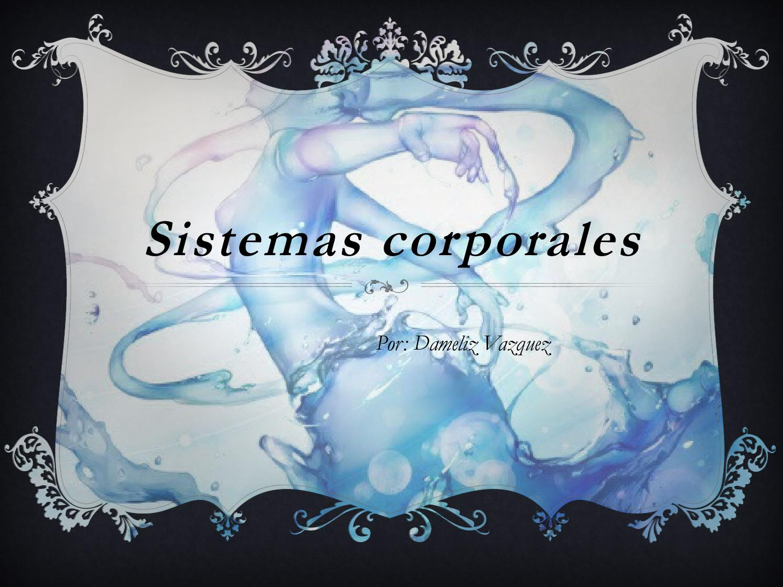 Sistemas corporales by Dameliz - issuu