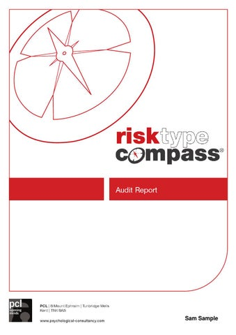 audit report sample by psychological consultancy limited issuu