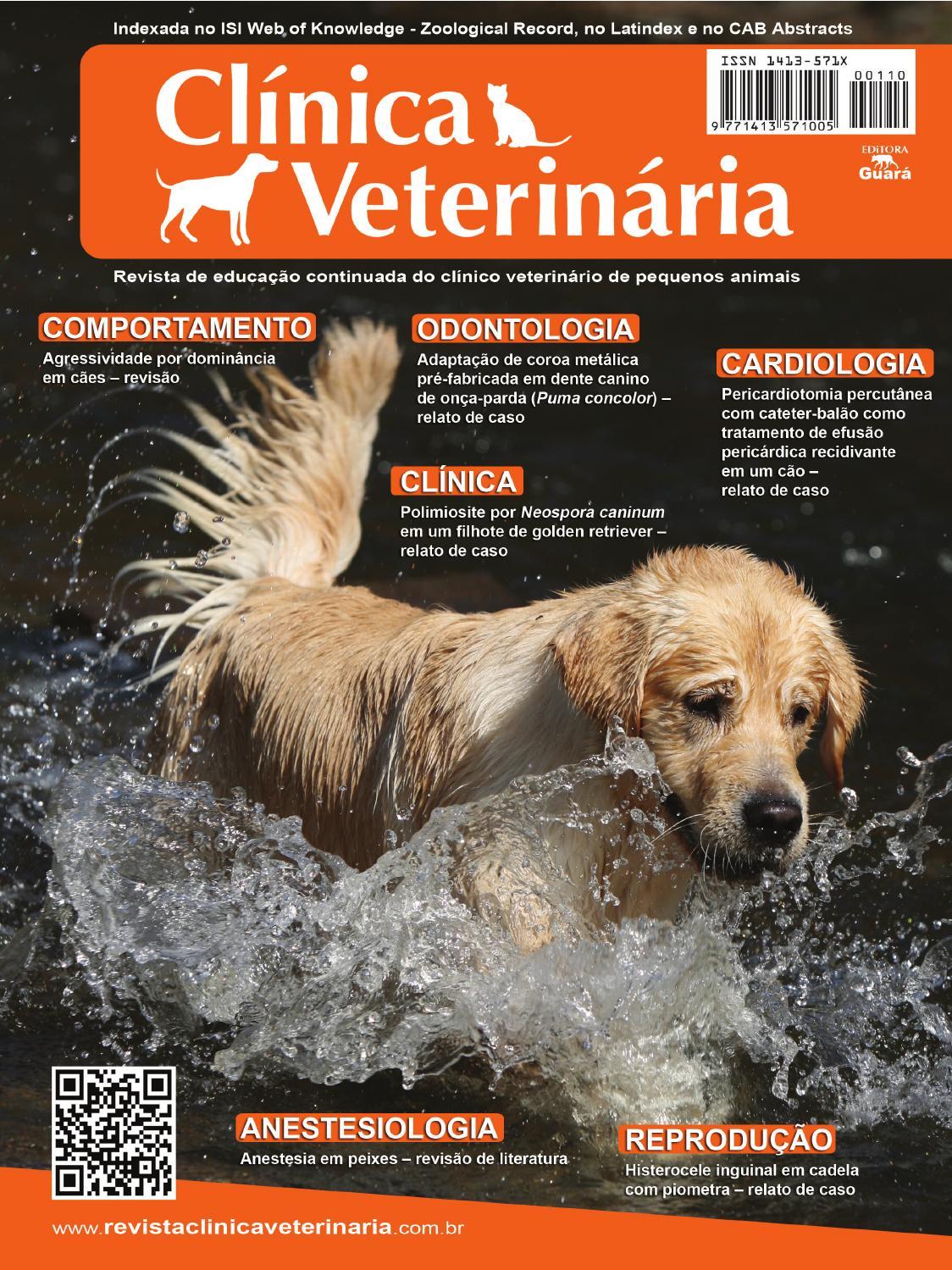 agrandamiento de la próstata perro cura farmacología