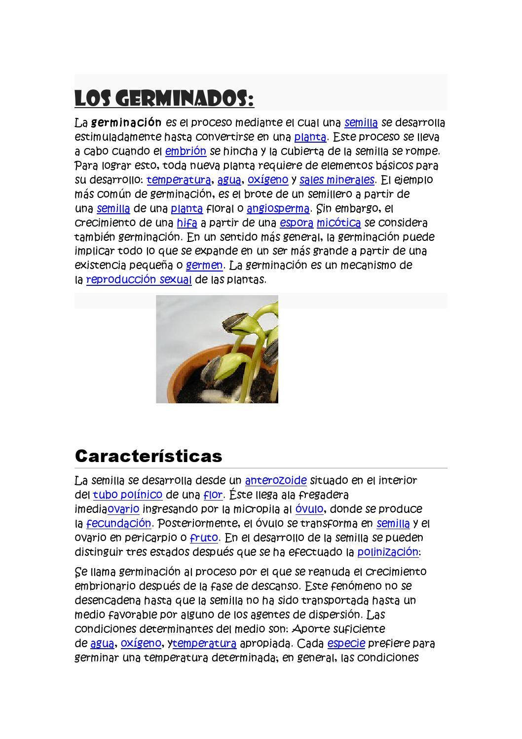 Los germinados by hilachabi - issuu