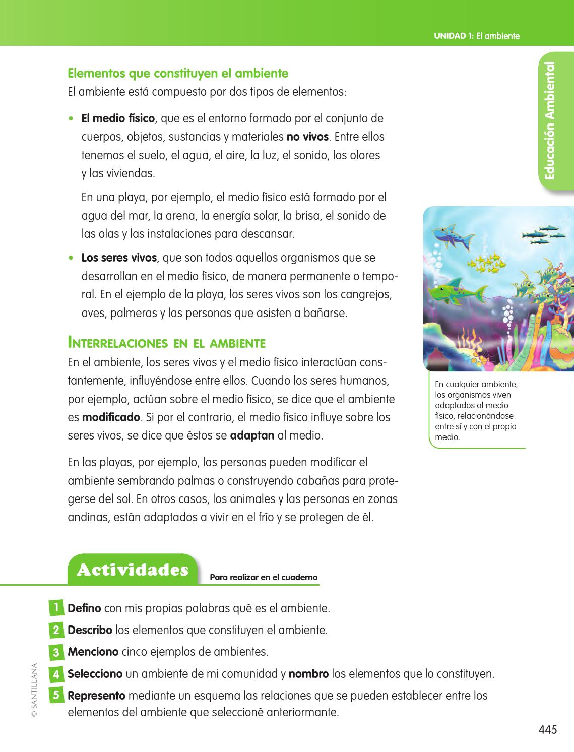 Enciclopedia did ctica 4 by santillana venezuela issuu for Objetos para banarse