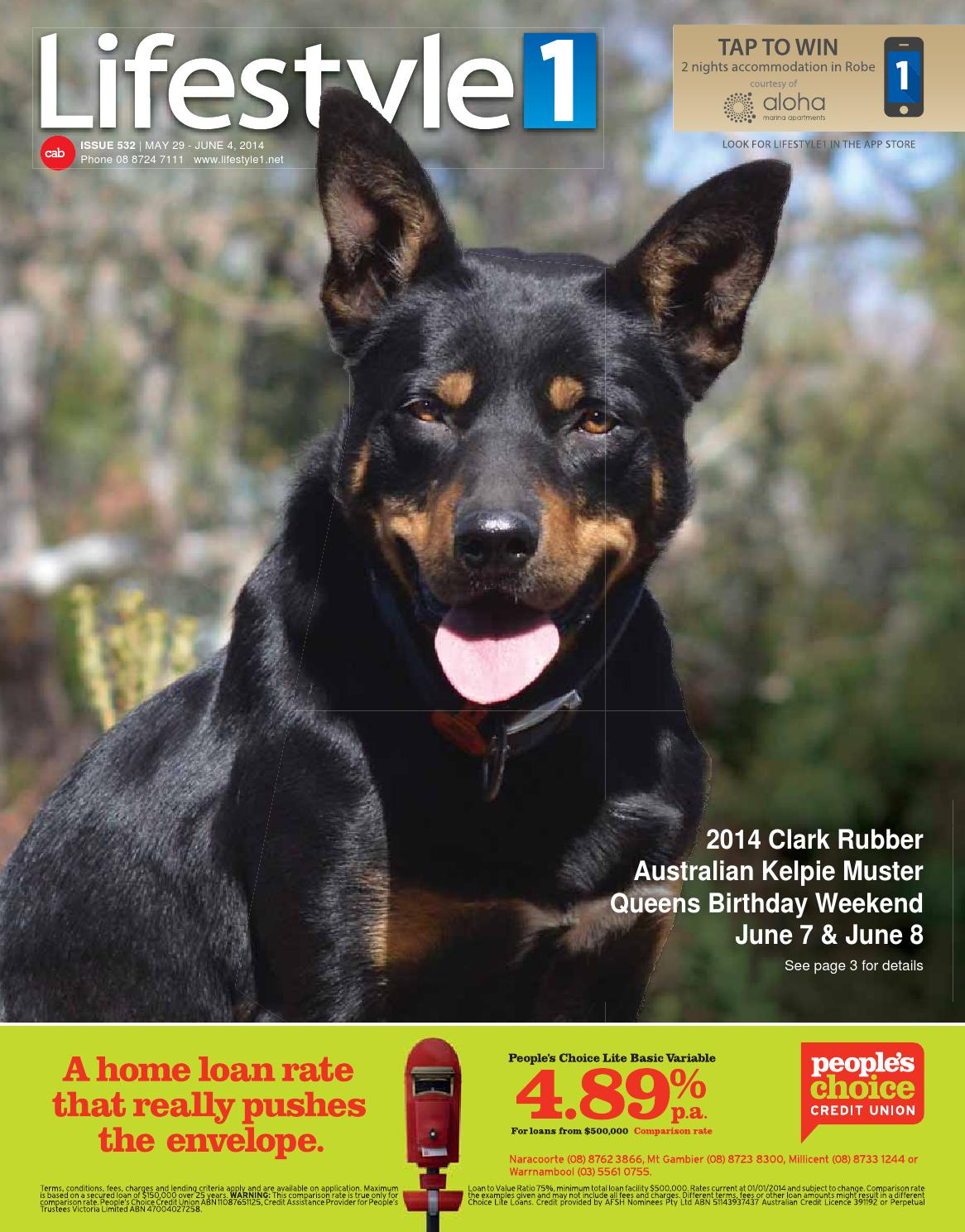 Collie Lassie Million Doggie Bones Bill Novelty Notes 1 5 25 50 100 500 or 1000