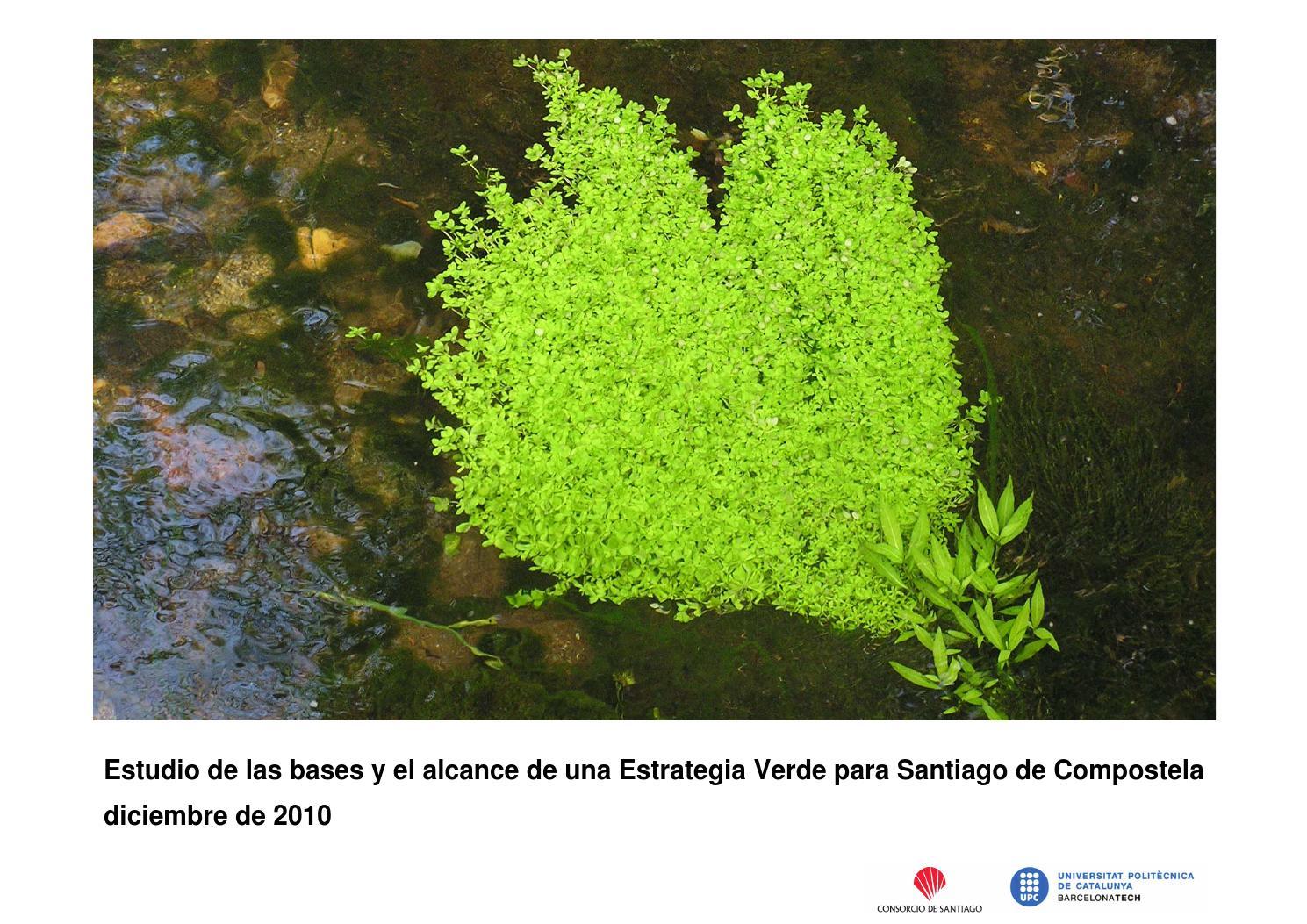 Una estrategia verde para santiago by Consorcio de Santiago - issuu