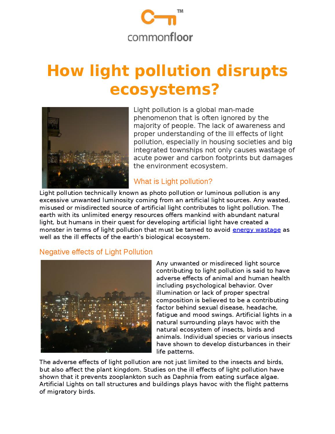 How light pollution disrupts ecosystems? by arica mishra - issuu