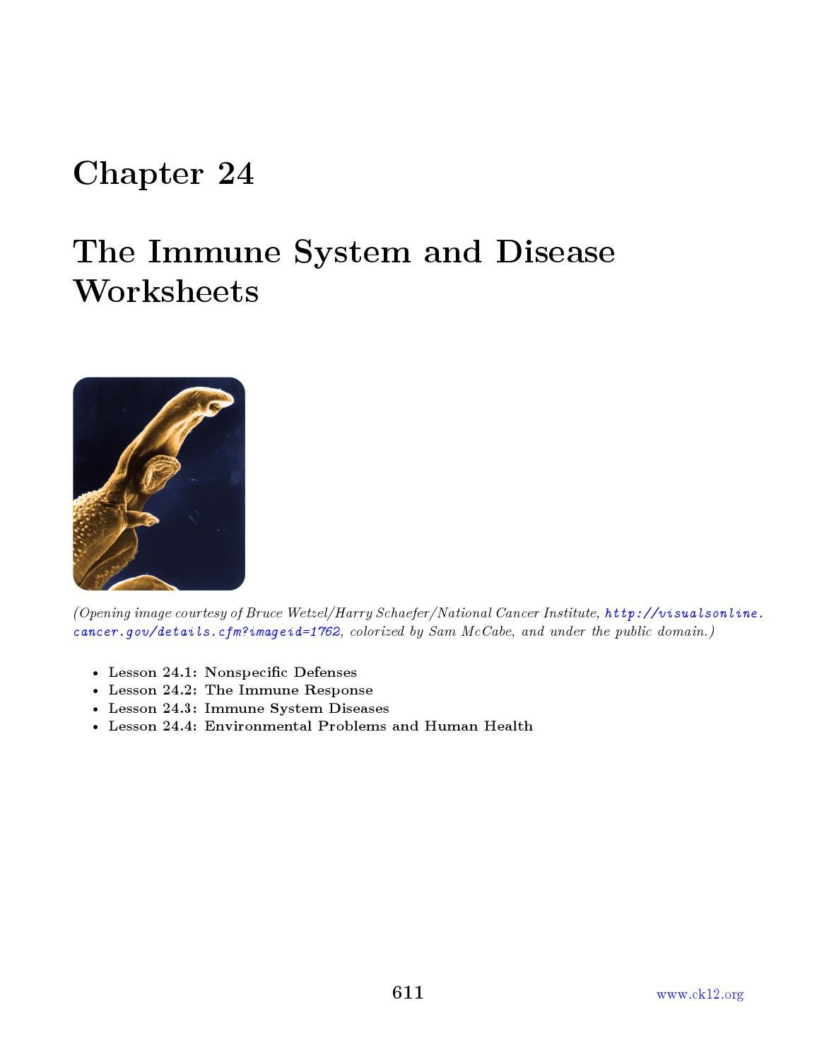 Chapter 24 ck 12 biology chapter 24 worksheets by watabec issuu – Immune System Worksheets