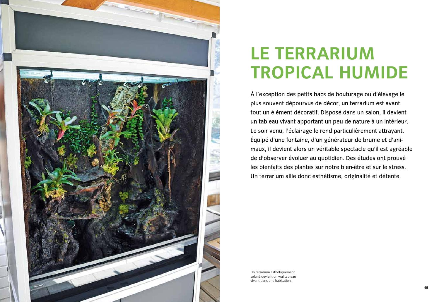 extrait cr er un terrarium tropical humide ditions ulmer by ditions ulmer issuu. Black Bedroom Furniture Sets. Home Design Ideas