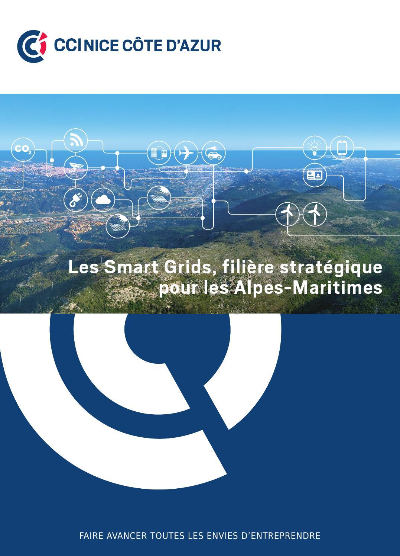 Les smart grids fili re strat gique pour les alpes - Chambre de commerce et d industrie nice cote d azur ...