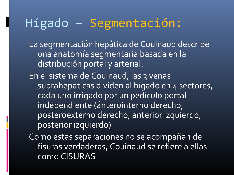 5 anatomía hígado, vias biliares y páncreas 2014 by HELARD ROMAN ...