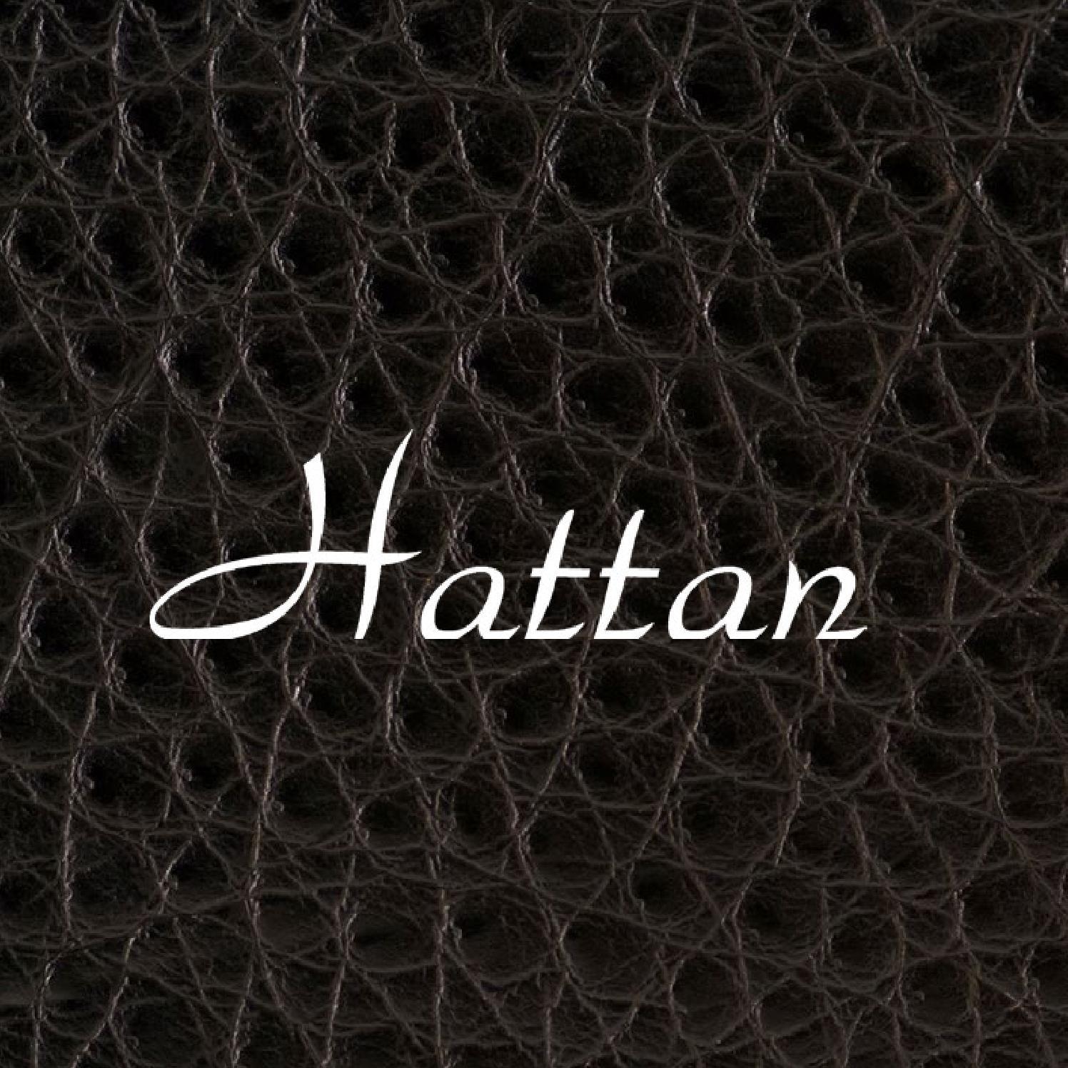 5d82b7150568b PGE Hattan - ESAMC by Camila Franco - issuu