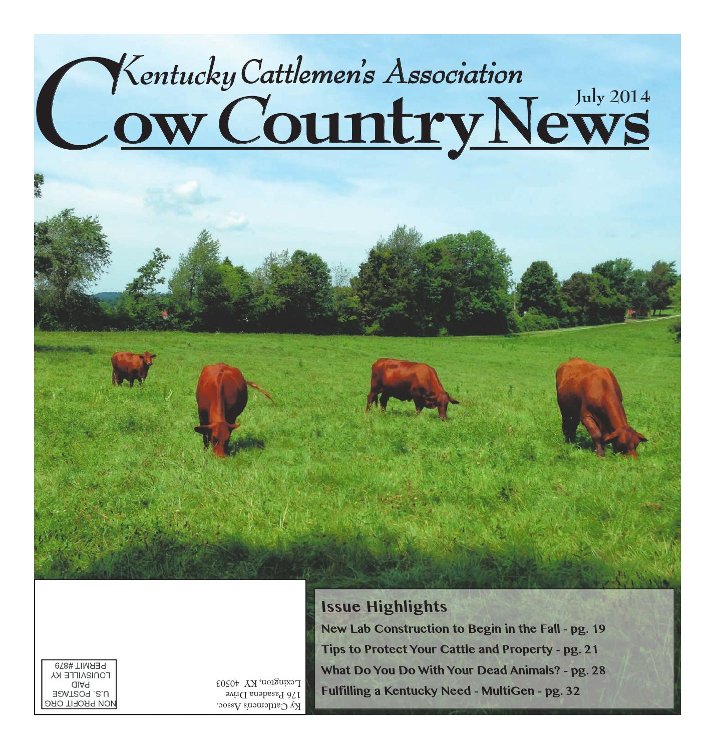 the kentucky cattlemans association essay Welcome ohio cattlemen's association vision: maintain profitability and growth of ohio's beef industry mission: member focused and issue driven to represent the business interests and way of life important to ohio's cattle families.