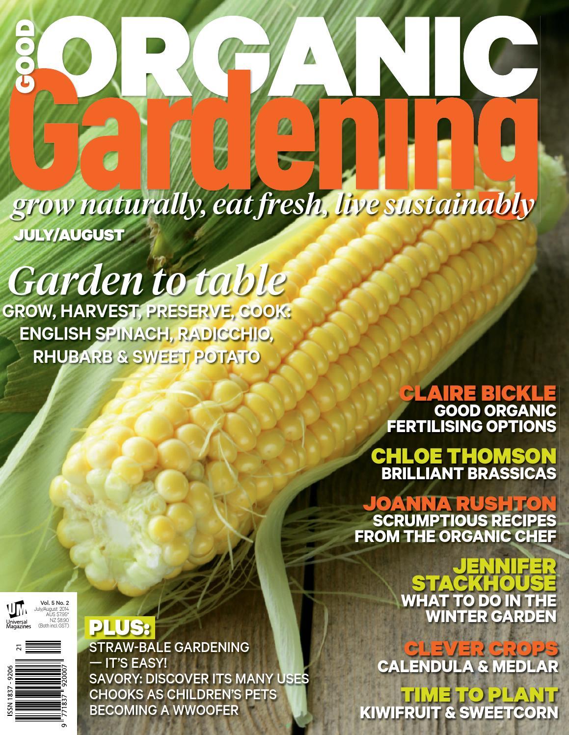 Warrigal Greens//NZ Spinach 50 Seeds Edible /& Good Groundcover Salt Tolerant Bush