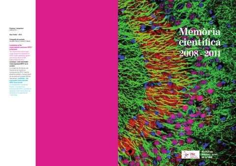Alberts Biologia Molecolare Della Cellula Epub Download