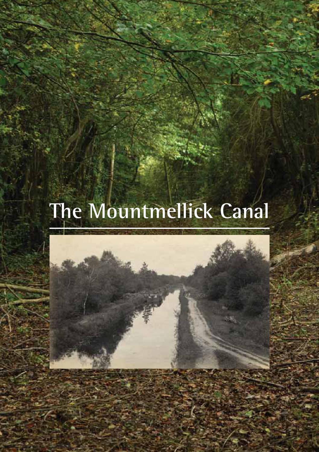 Mountmellick - Leinster Express