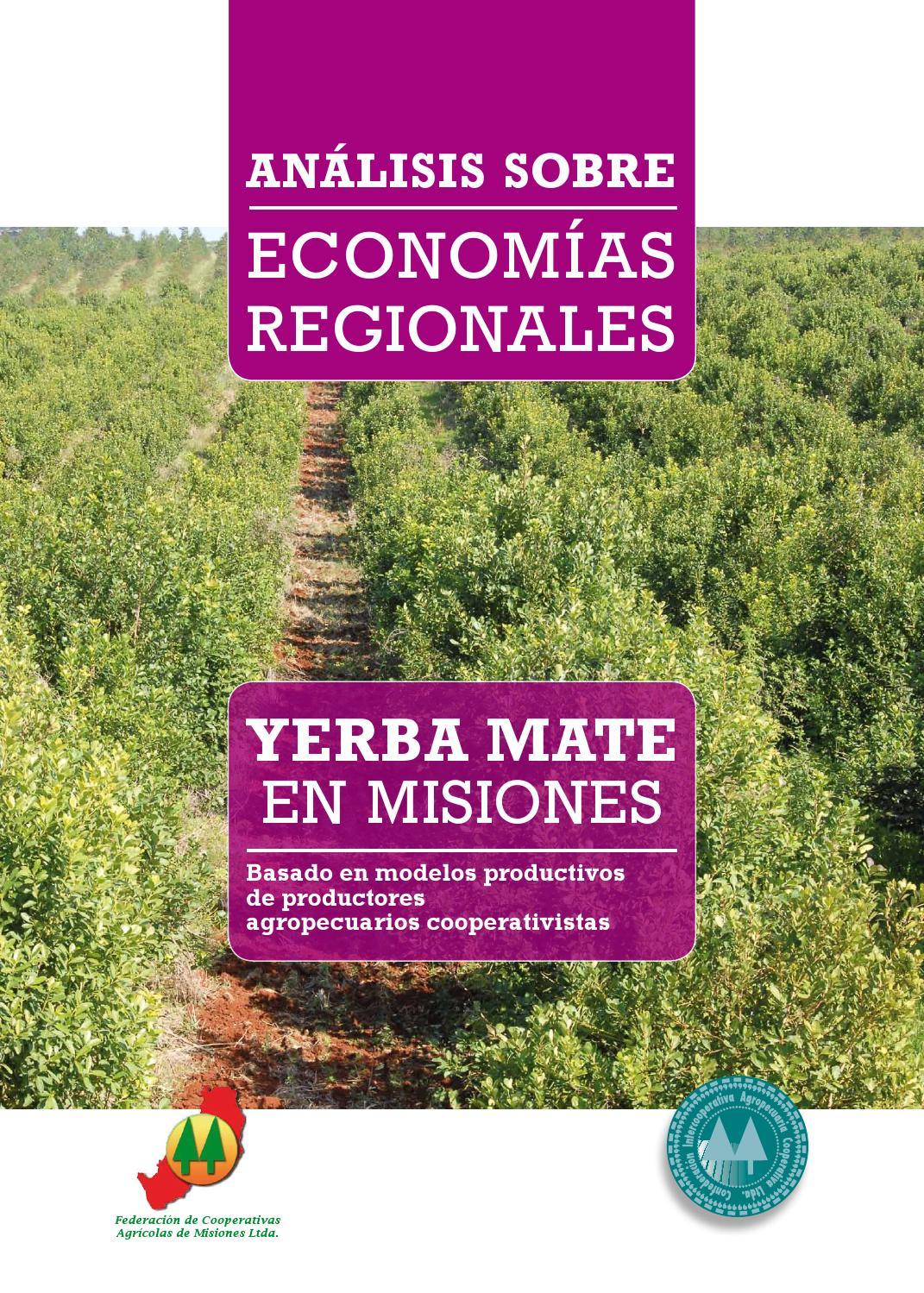 Circuito Yerba Mate : Análisis sobre economias regionales yerba mate en misiones by