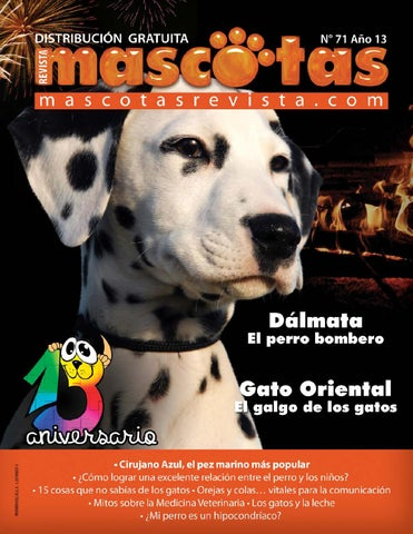 Revista Mamá Joven Edición 63 by Revista Summa - issuu 99529437c9f4