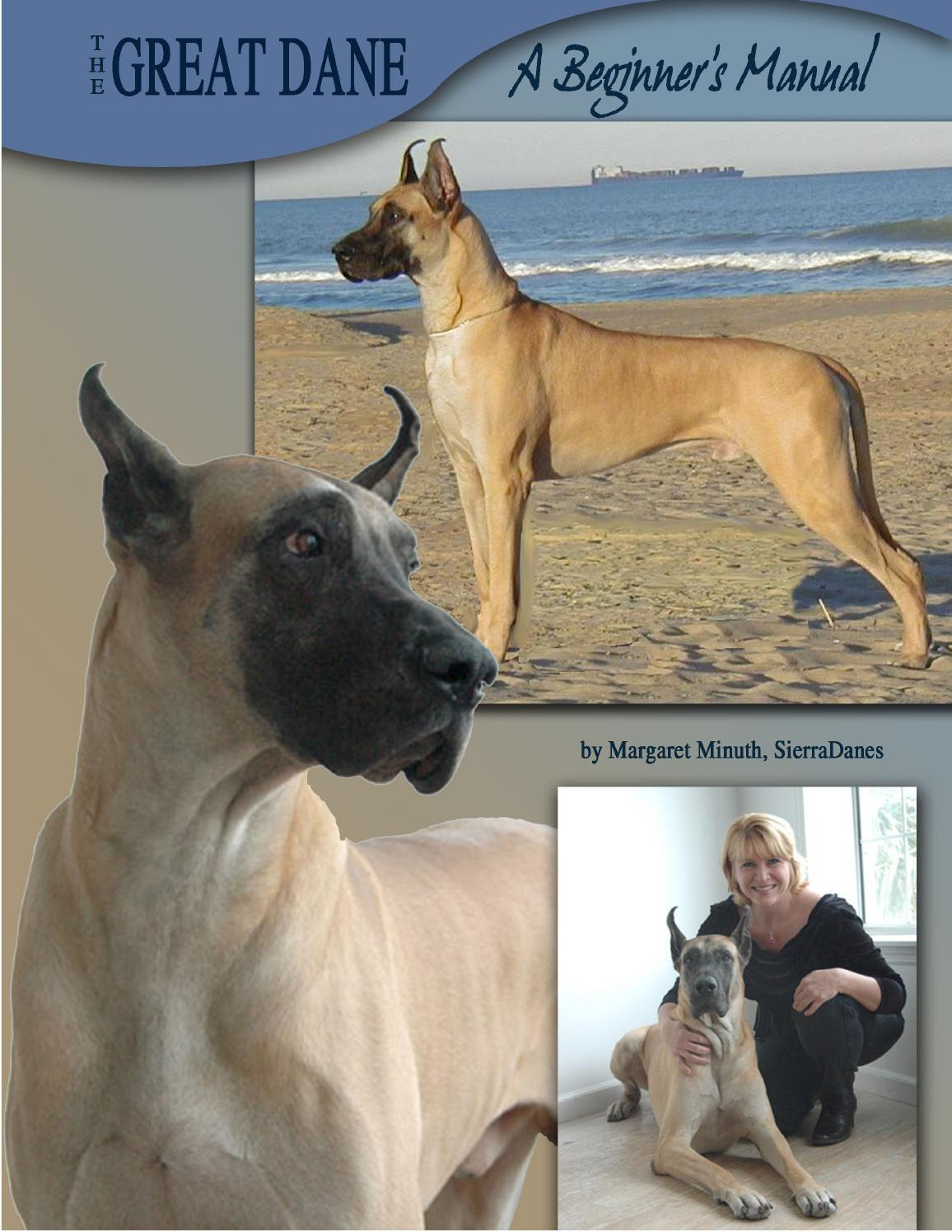 The great dane a beginners manual by margaret minuth issuu nvjuhfo Choice Image