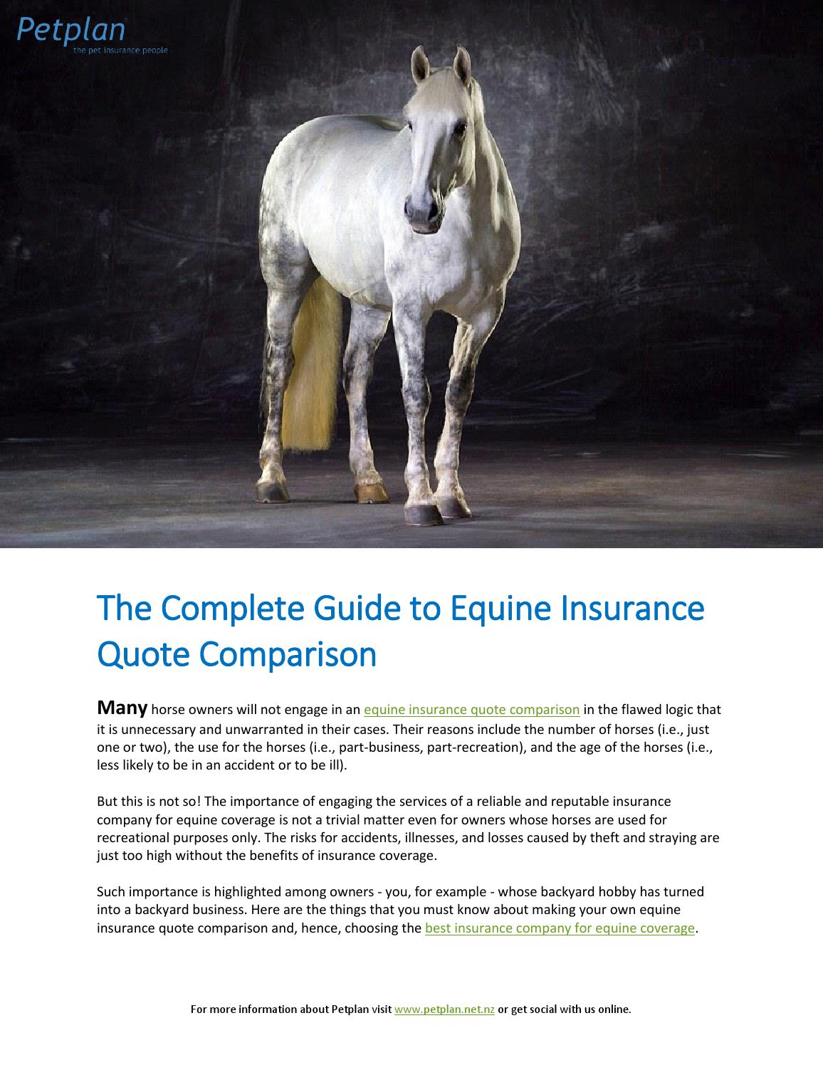 The Complete Guide To Equine Insurance Quote Comparison By Georgia Picton Issuu