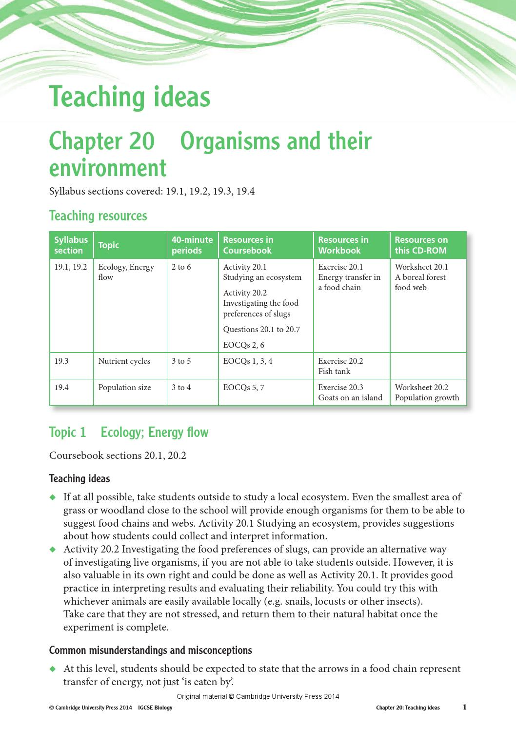 Worksheet Food Chain Trophic Levels Worksheet Answers Thedanks