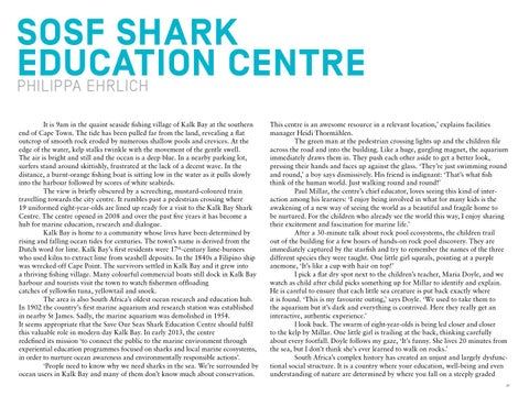 Page 24 of SOSF Centre   SOSF Shark Education Centre  Annual Report 2013