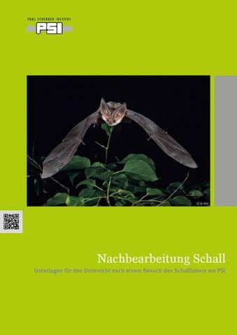 Nachbearbeitung Schall by Paul Scherrer Institut - issuu