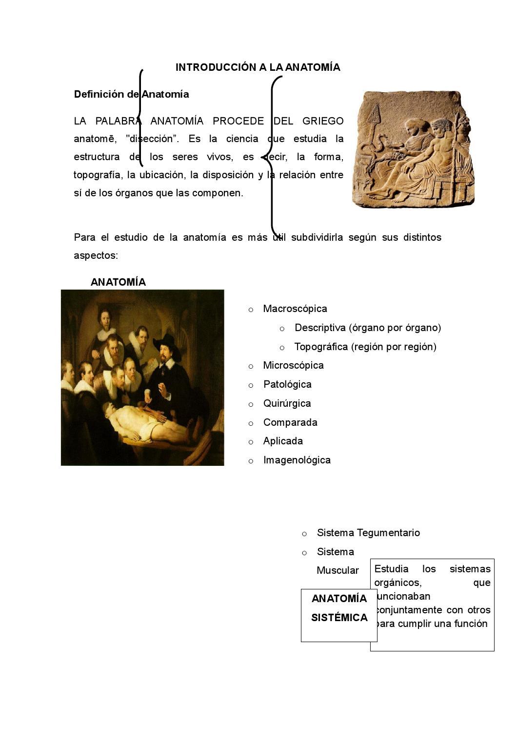 Introducción a la Anatomía by Diego Moreta - issuu