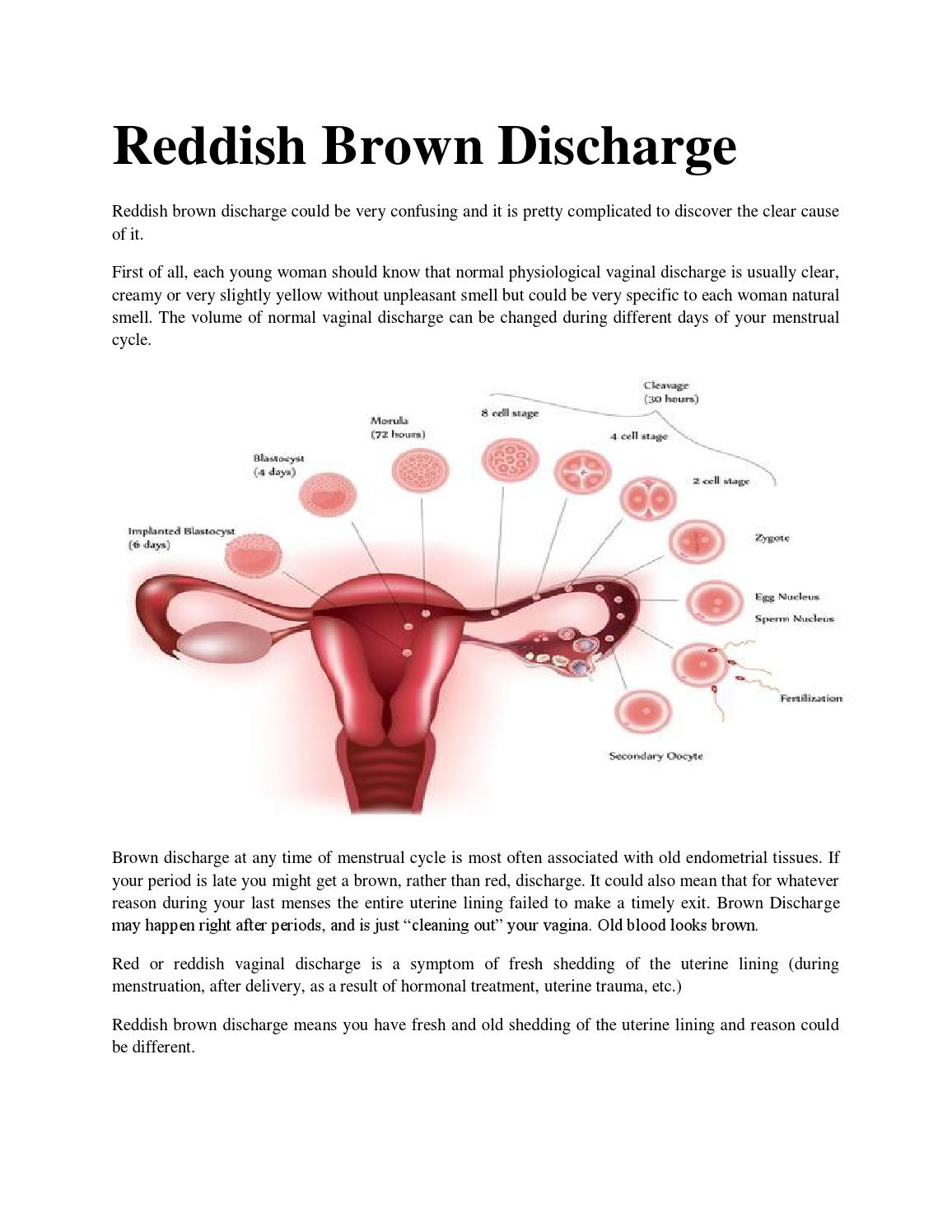 Reddish Brown Discharge By Brown Discharge - Issuu-8022
