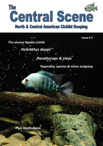 The Central Scene Issue 2 By Lee Nuttall Issuu