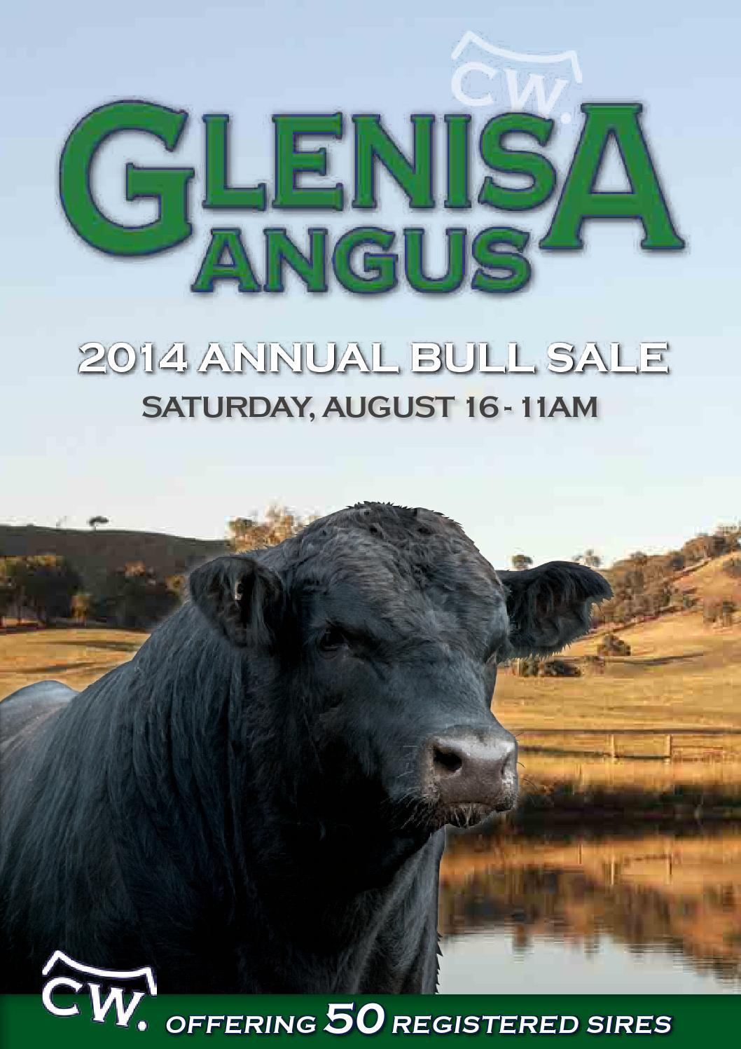 glenisa angus bull sale catalogue 2014 by australian