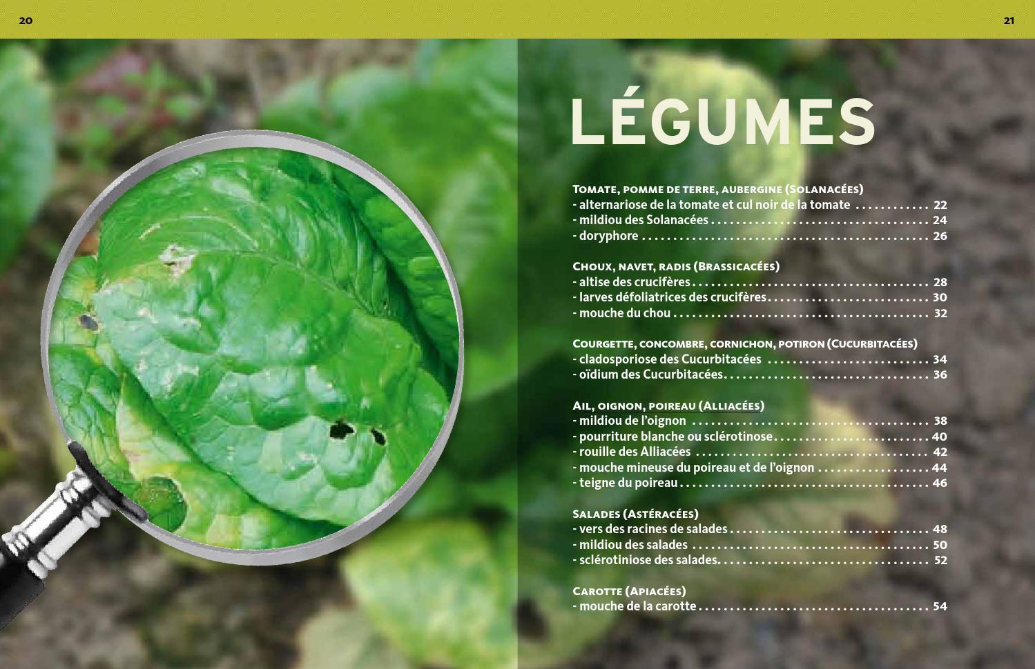 extrait les 50 plaies du jardinier - Éditions ulmerÉditions