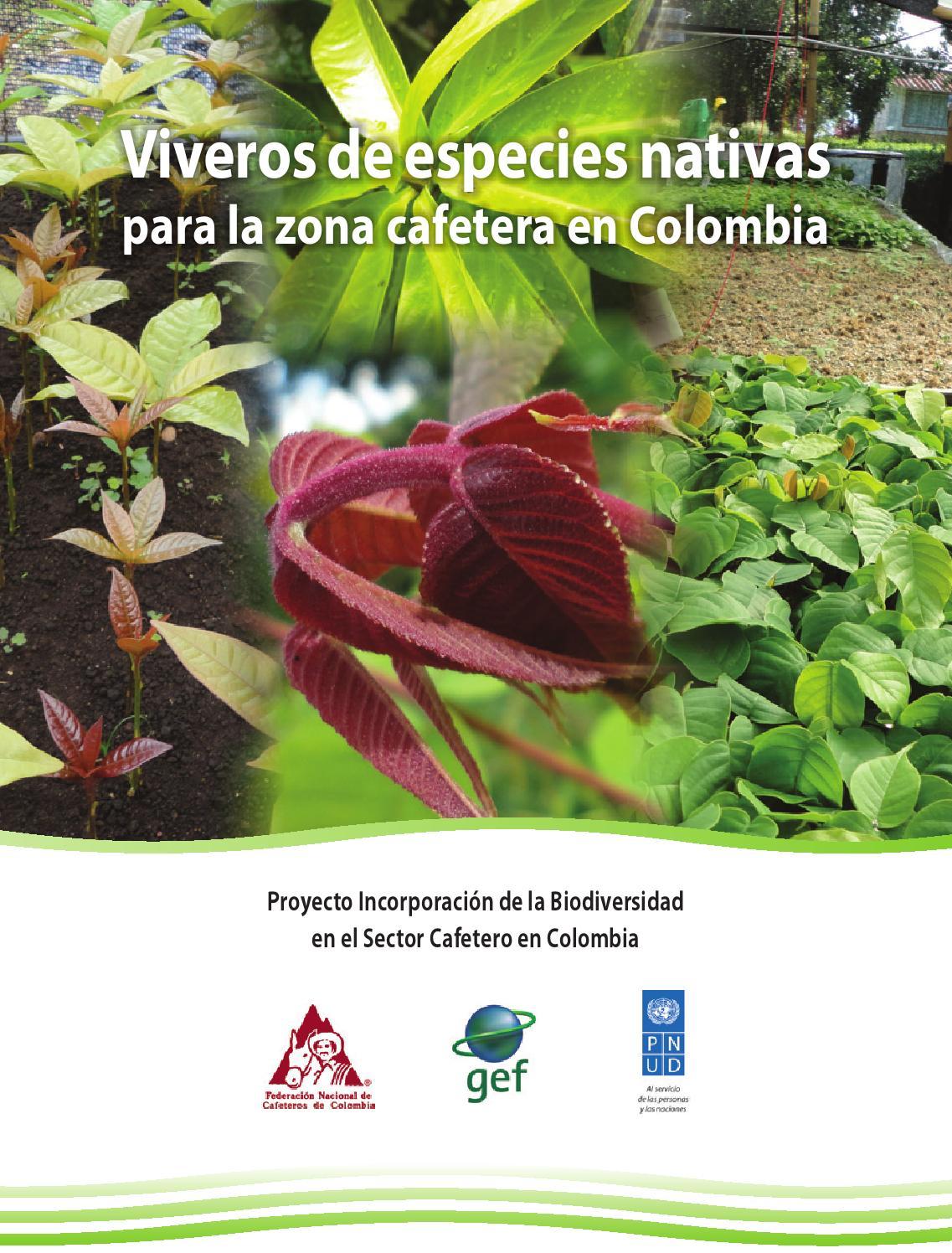 Viveros de especies nativas para la zona cafetera en for Viveros en colombia