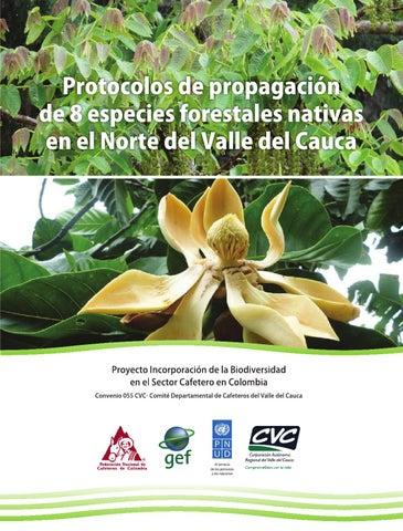 Protocolos de propagaci n de 8 especies forestales nativas for Vivero las magnolias