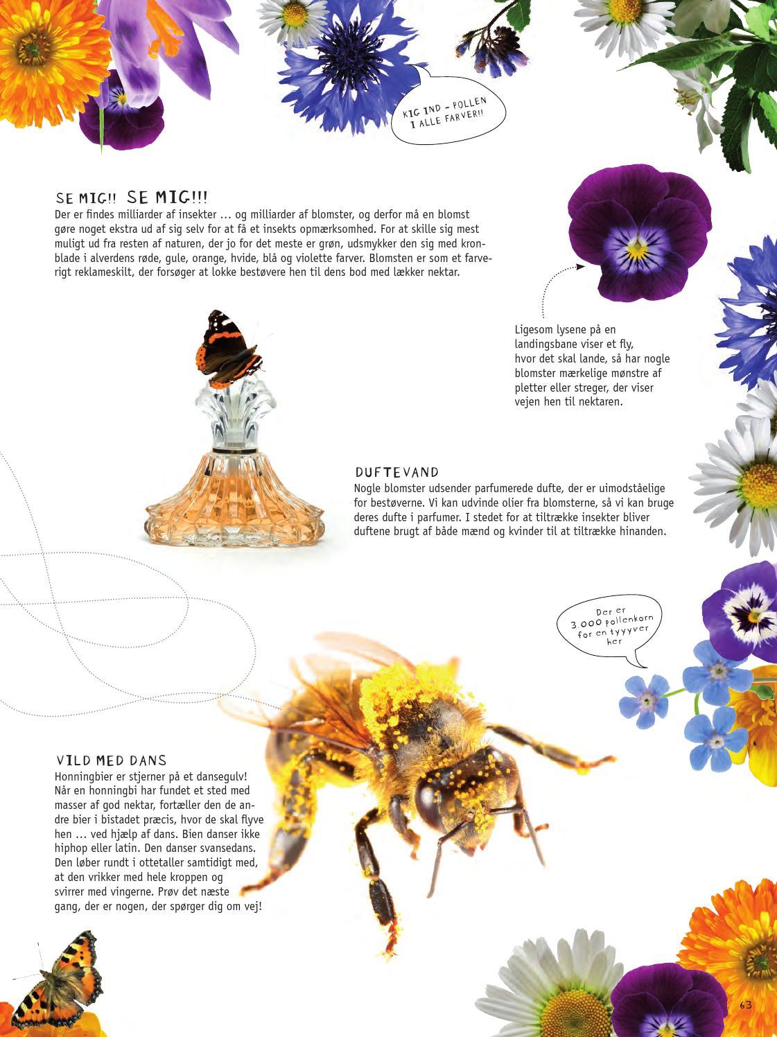 Haven til Maven - naturen på din tallerken by Haver til Maver - issuu