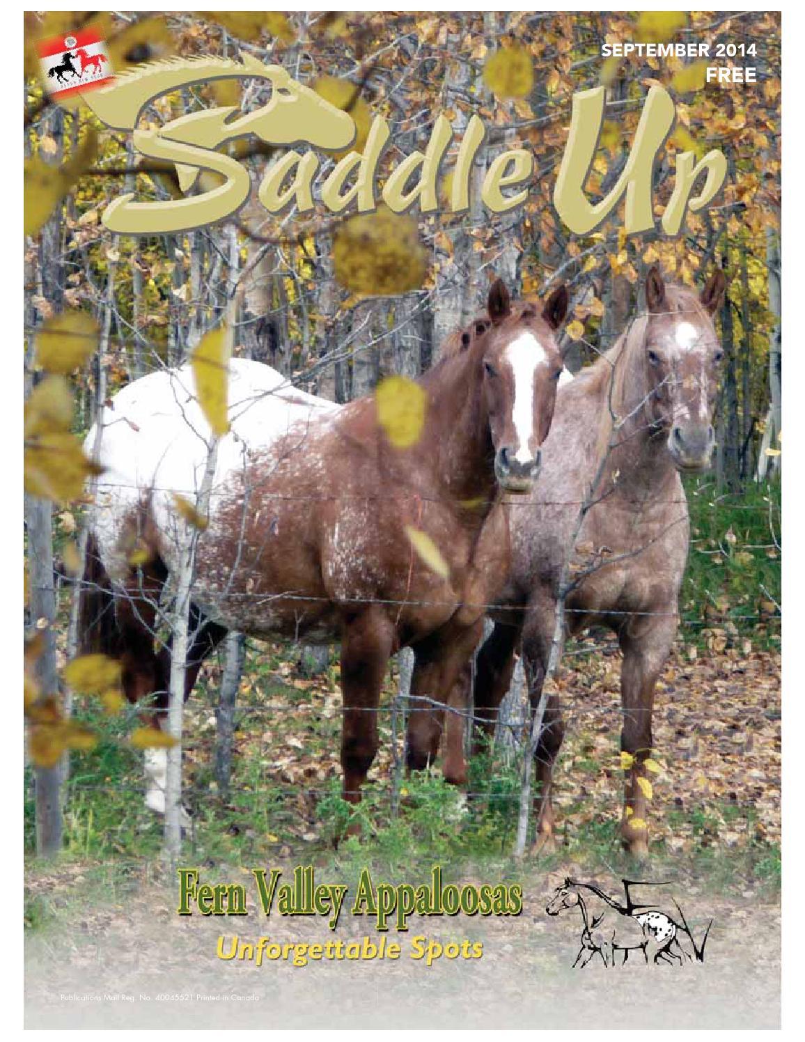 Saddle up Sept 2014 by Saddle Up magazine - issuu 5d0bbd289f