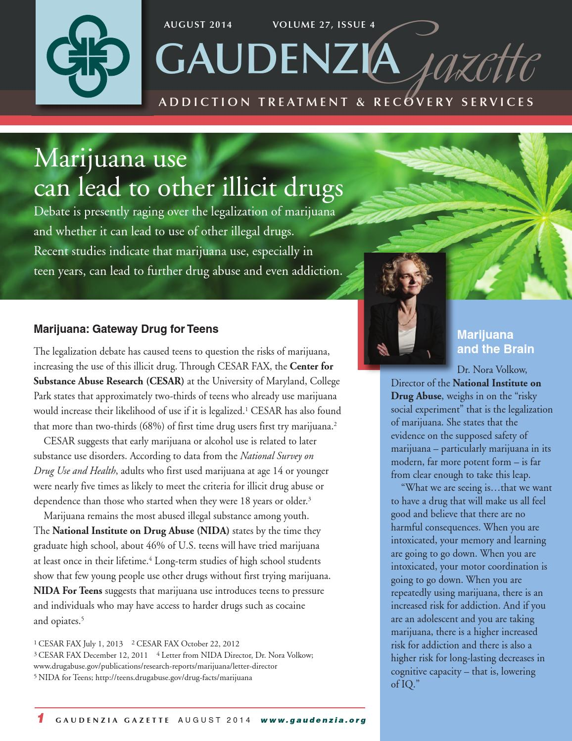 the drug legalization debate pdf