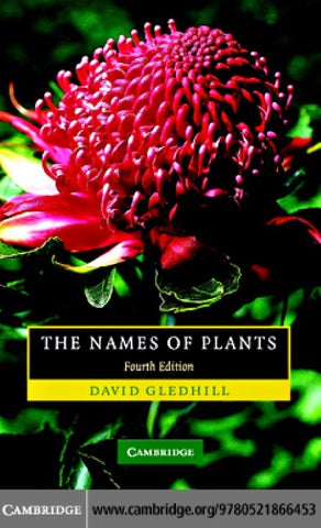 9a5378c074 The Names of Plants by Marco Acuña - issuu