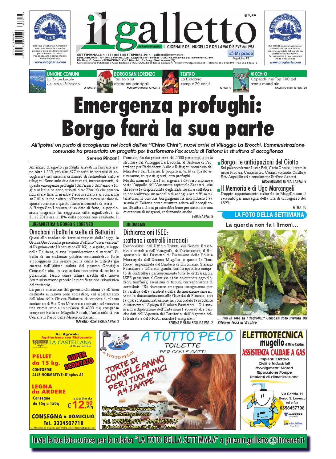 Galletto 1171 del 6 settembre 2014 by Il Galletto Giornale - issuu 8ba3b5fd3f6