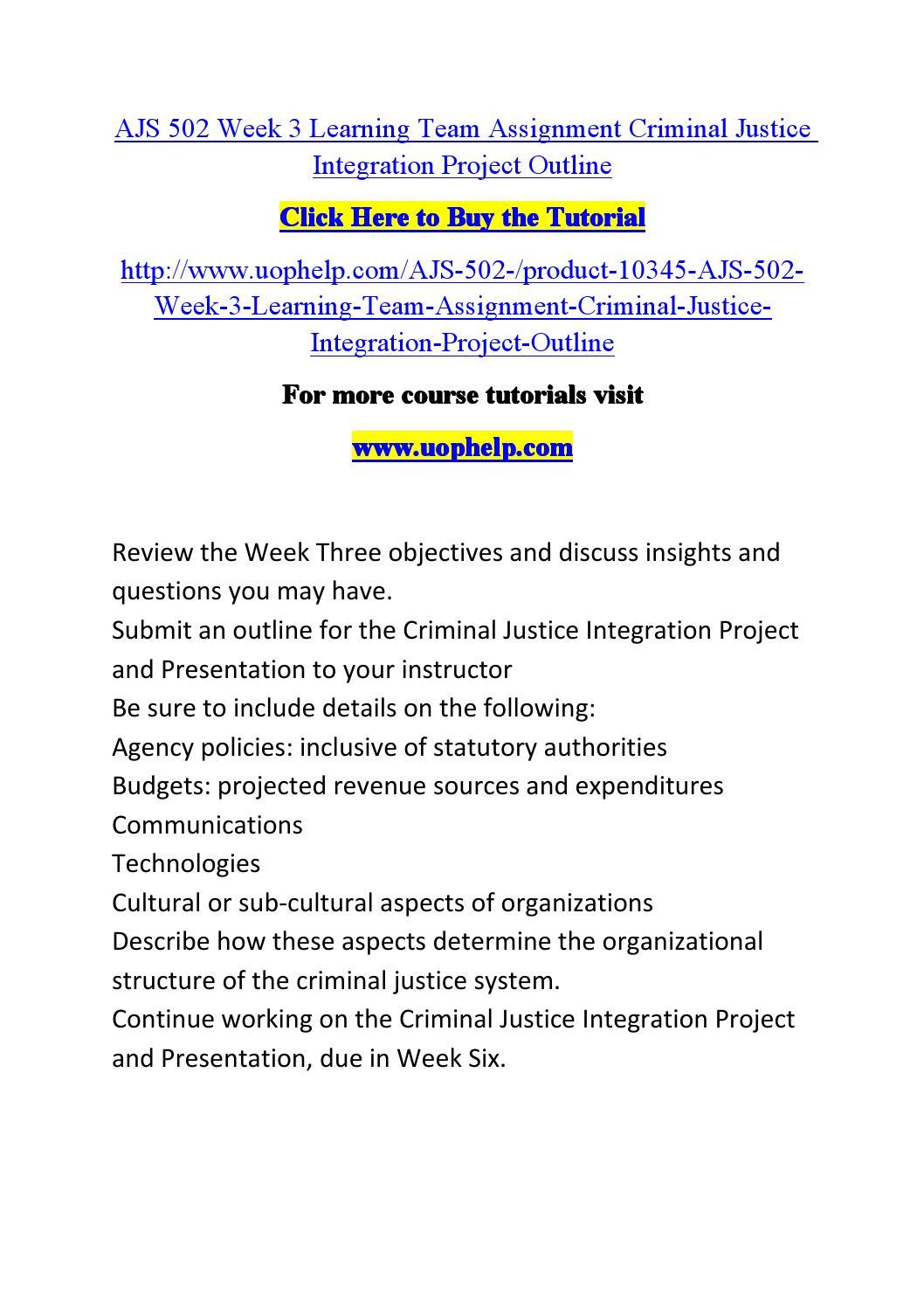 Criminal Justice Integration Essay Sample