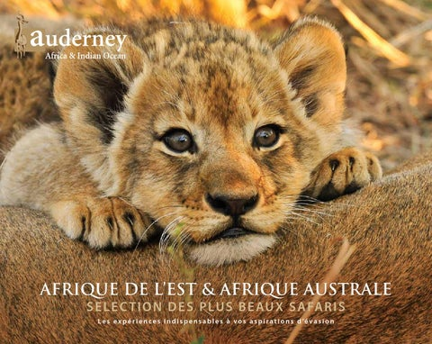 The Ultimate To Do List Africa 2014 15 By Auderney By Koolivoo   Issuu